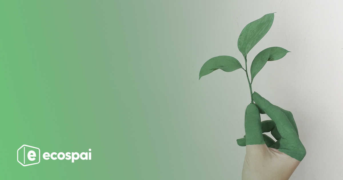 Ecospai, construcción sostenible y eficiente